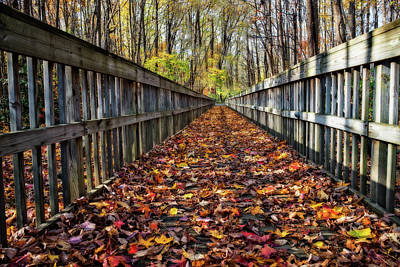 Photograph - Walkway In The Fall by Melinda Dreyer