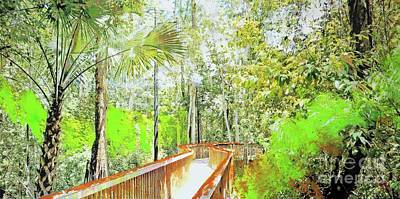 Palm Trees Mixed Media Mixed Media - Walkway In The Woods by Nica Art Studio