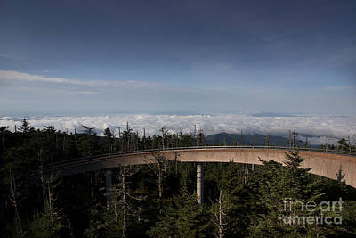 Photograph - Walkway To The Clouds by Mike Eingle