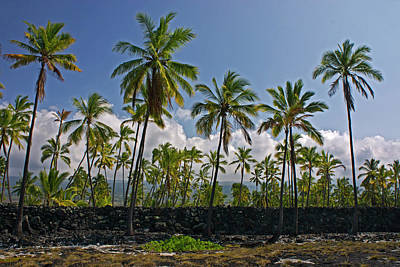 Photograph - Wall At Pu Uhonau O Honaunau by Inge Riis McDonald