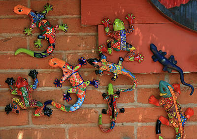 Photograph - Wall Crawlers by Allen Beatty