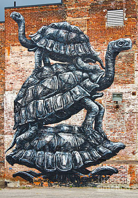 Painted Turtle Wall Art - Photograph - Wall Mural In Richmond Virginia by ELITE IMAGE photography By Chad McDermott