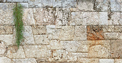 Photograph - Wall Street Of The Tombs Sacred Way Kerameikos Athens by Jebulon