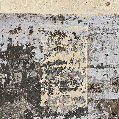 Photograph - Wall Texture Number 14 by Carol Leigh