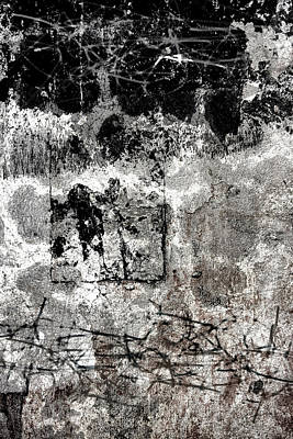 Photograph - Wall Texture Number 15 by Carol Leigh