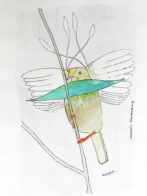 Painting - Wallace's Standardwing Bird Of Paradise by Keshava Shukla