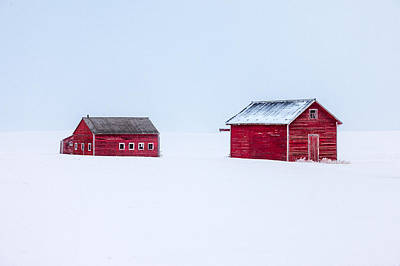 Barns Photograph - Walled In White by Todd Klassy