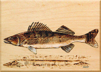 Pyrography - Walleye by Ron Haist