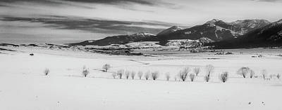 Photograph - Wallowa Mountains by Cat Connor