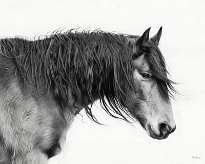 Photograph - Wally by Phyllis Burchett