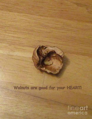 Photograph - Walnuts Are Good For Your Heart by Marie Neder