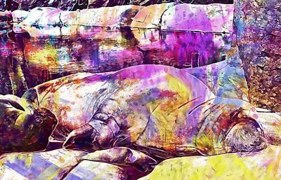 Walrus Mammal Sea Lion  Art Print