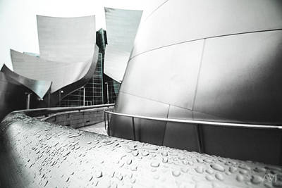 Photograph - Walt Disney Concert Hall Droplets by Andrew Mason