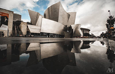 Photograph - Walt Disney Concert Hall Reflectuon by Andrew Mason