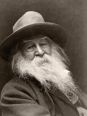 Head Shot Drawing - Walt Whitman, 1819-1892. American Poet by Vintage Design Pics