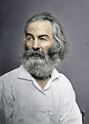 Photograph - Walt Whitman by Granger