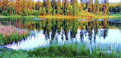 Photograph - Walton Lake Reflections by Michele Penner