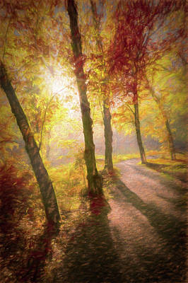Photograph - Wander Into Autumn by Debra and Dave Vanderlaan