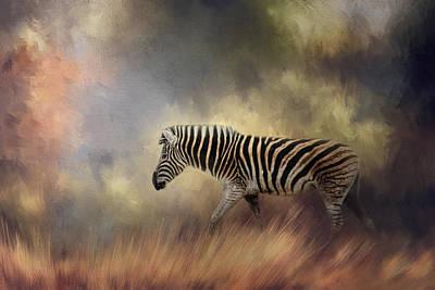 Photograph - Wandering Alone by Jai Johnson