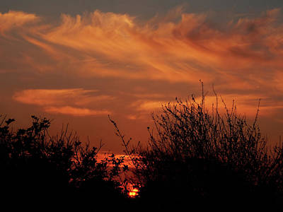 Photograph - Wandering Sunset by Mark Blauhoefer