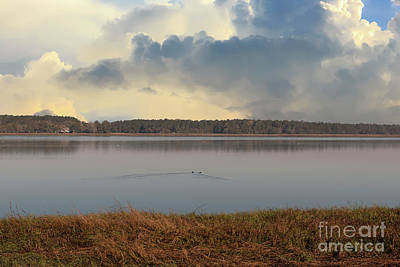 Photograph - Wando River Landscape by Dale Powell