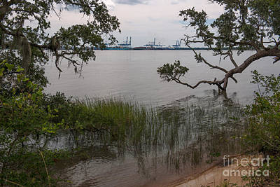 Photograph - Wando River Terminal Port by Dale Powell