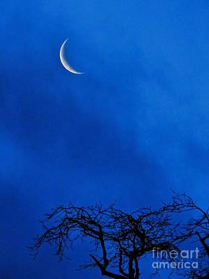 Photograph - Waning Crescent by Peggy Hughes