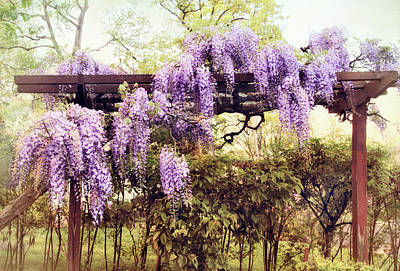 Digital Art - Waning Wisteria by Jessica Jenney