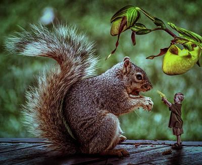 Squirrel Mixed Media - Wanna Play by Solomon Barroa