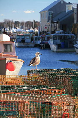 Fore River Photograph - Wanting And Waiting by Elizabeth Dow