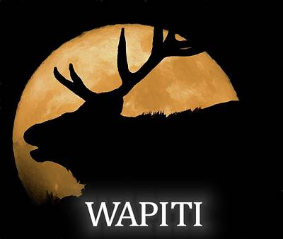 Digital Art - Wapiti by Dan Sproul