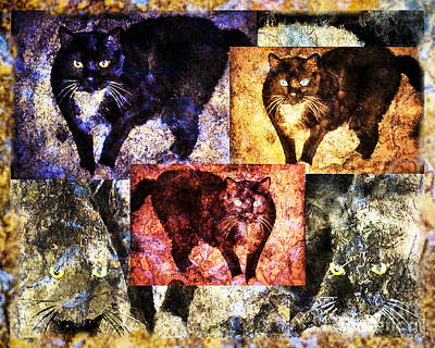 Digital Art - Warhol Pissed Cat by Georgianne Giese