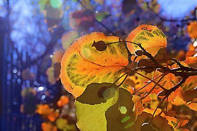 Warm Autumn Day Art Print by Kat Besthorn
