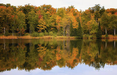 Photograph - Warm Autumn Reflections by Rachel Cohen