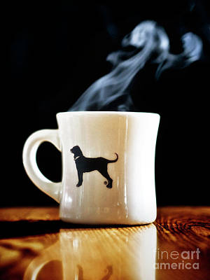 Photograph - Warm Cup Of by Mark Miller