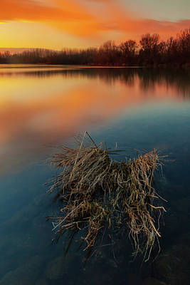 Photograph - Warm Evening by Davor Zerjav