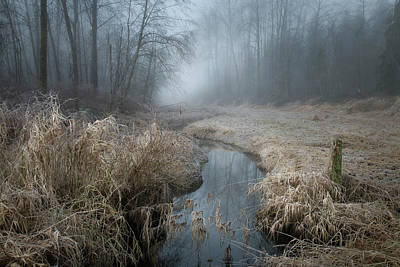 Photograph - Warm Grasses And Cool Fog by Adam Gibbs