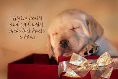Puppy Love Mixed Media - Warm Hearts by Lori Deiter