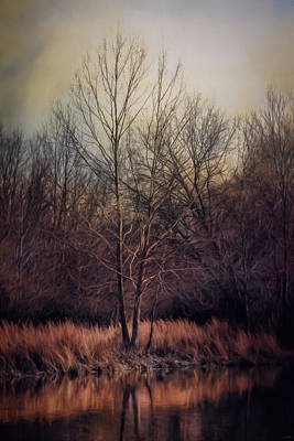 Photograph - Warm Winter Peace by Jai Johnson