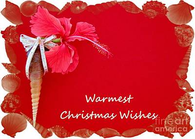 Photograph - Warmest Christmas Wishes by Barbie Corbett-Newmin
