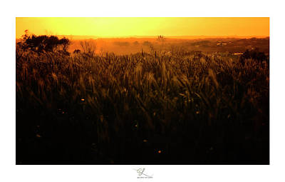 Warmth Of A Yellow Sun Art Print