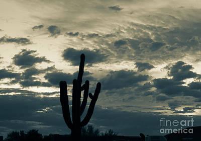 Photograph - Warmtone Sunrise by Deniece Platt