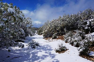 Photograph - Warner Springs Snow by Julia Ivanovna Willhite
