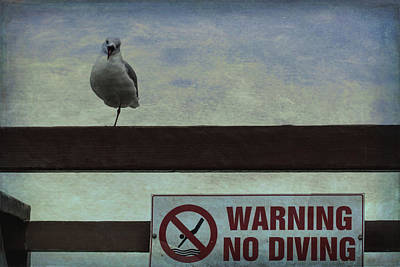 Photograph - Warning No Diving 1 by Ernie Echols