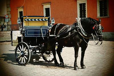 Photograph - Warsaw Carriage 02 by Dora Hathazi Mendes