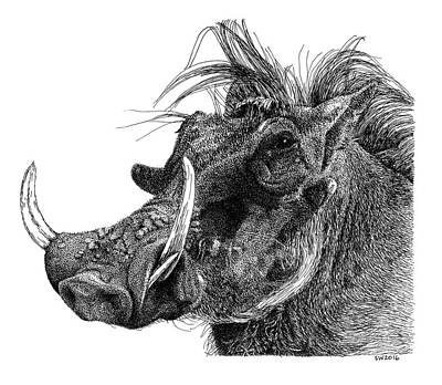 Drawing - Warthog by Scott Woyak