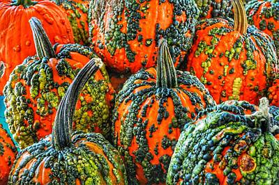 Photograph - Warty Pumkins  by Joseph Caban
