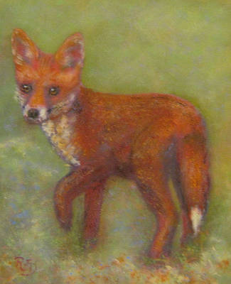 Painting - Wary Fox Cub by Richard James Digance