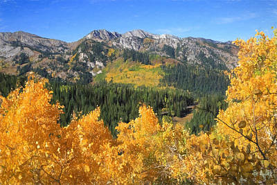 Big Cottonwood Canyon Photograph - Wasatch Autumn View by Donna Kennedy