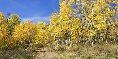 Autumn Road Photograph - Wasatch Fall by Chad Dutson